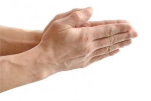 The Built palm, in gesture of the prayer, on white background close-up, isolated.